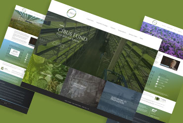 CHEDDAR MEDIA RESPONSIVE WEBSITE